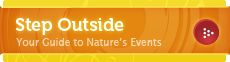 Step Outside: Your Guide to Nature's Events